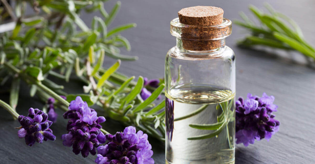 Essential oil bottle next to lavender