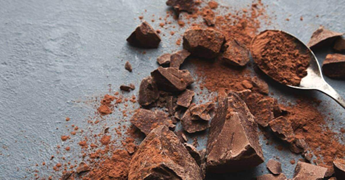 Cocoa powder with chunks of chocolate on a gray background