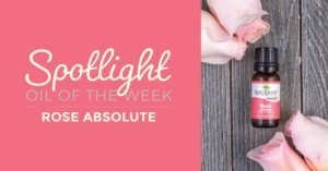 Rose Absolute: Essential Oil Spotlight of the Week