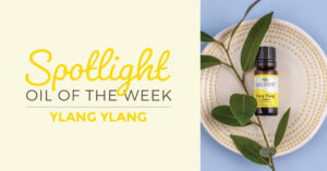 Ylang Ylang Complete from Plant Therapy