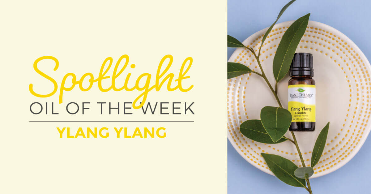 Ylang Ylang Complete: Essential Oil Spotlight of the Week