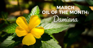 March Oil of the Month Damiana