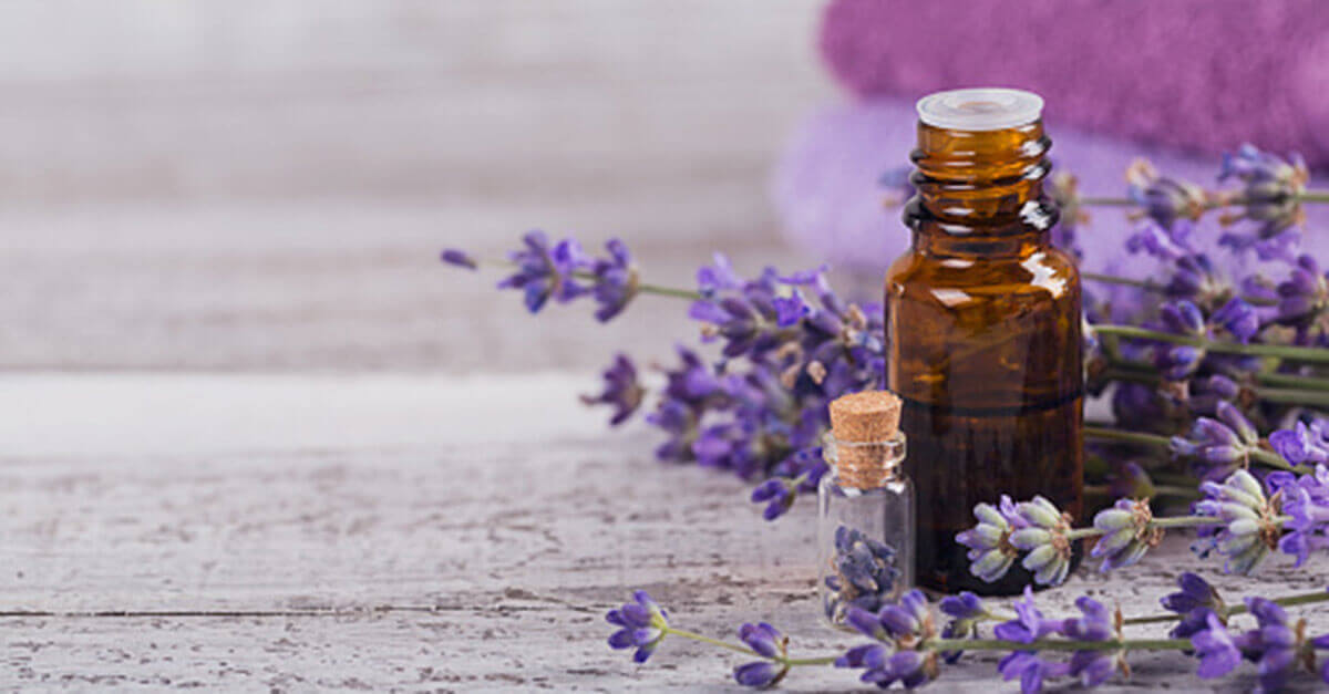 Essential oil bottles next to lavender flowers