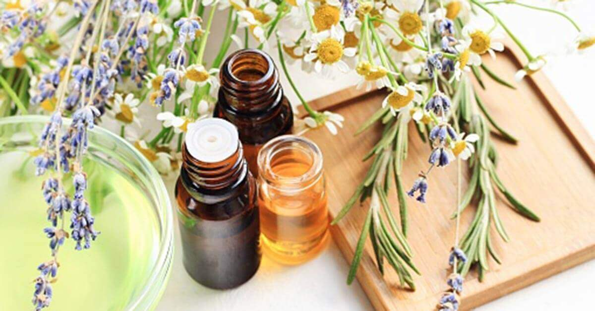 Essential oil bottles next to chamomile and lavender flowers
