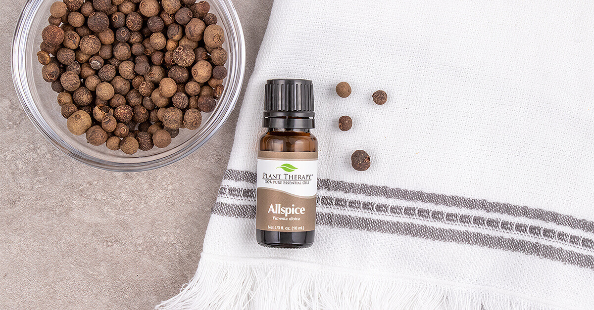 Allspice essential oil from plant therapy