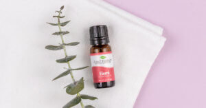 Elemi Essential Oil from Plant Therapy