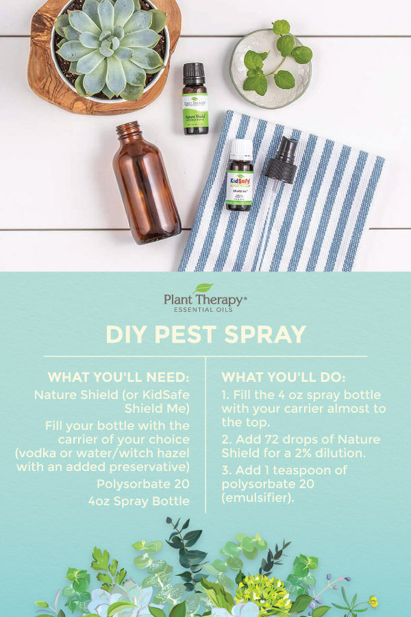 DIY pest spray natural nontoxic green living