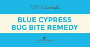 Essentials Video: Blue Cypress Bug Bite Remedy