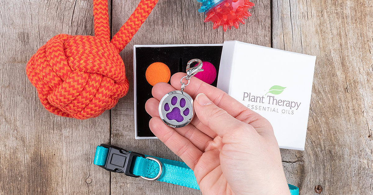 plant therapy pup & pony paw pal diffuser