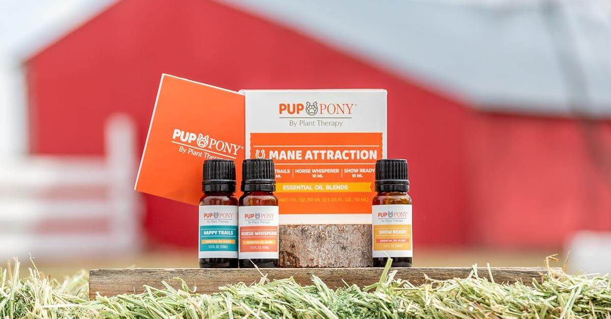 Pup & Pony collection from Plant Therapy