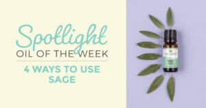 4 Ways to Use Sage: Our Essential Oil Spotlight of the Week