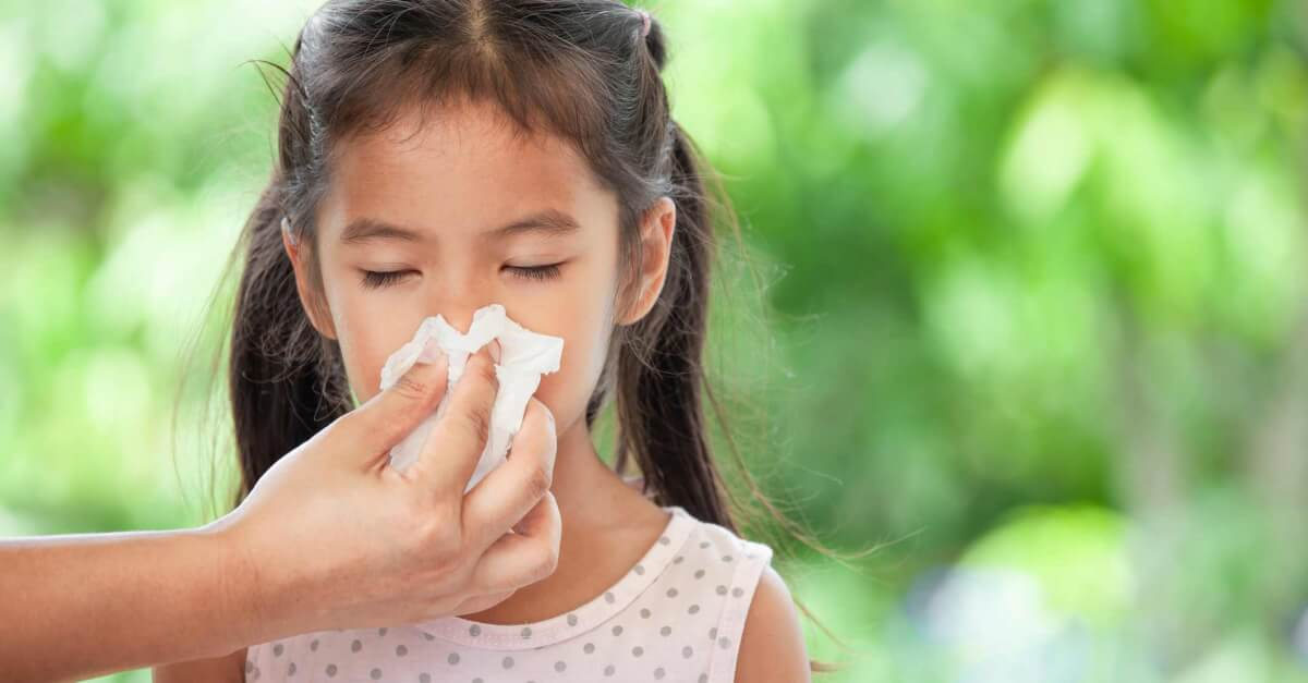 KidSafe Allergies: Which KidSafe Blend Should I Choose?