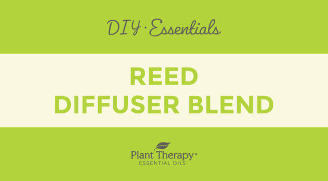 Essentials Video: Reed Diffuser Blend