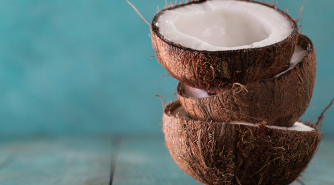 National Coconut Day: Why You Need Fractionated Coconut Oil