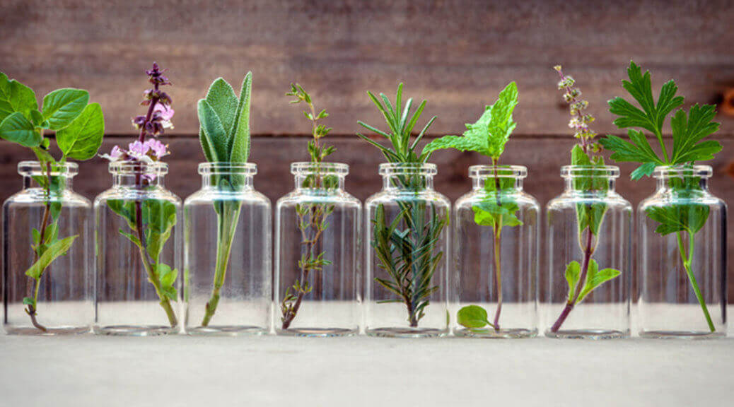 Bottles and Plants: Essential Oil Glossary