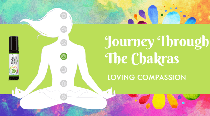 plant therapy chakra essential oil blends heart chakra