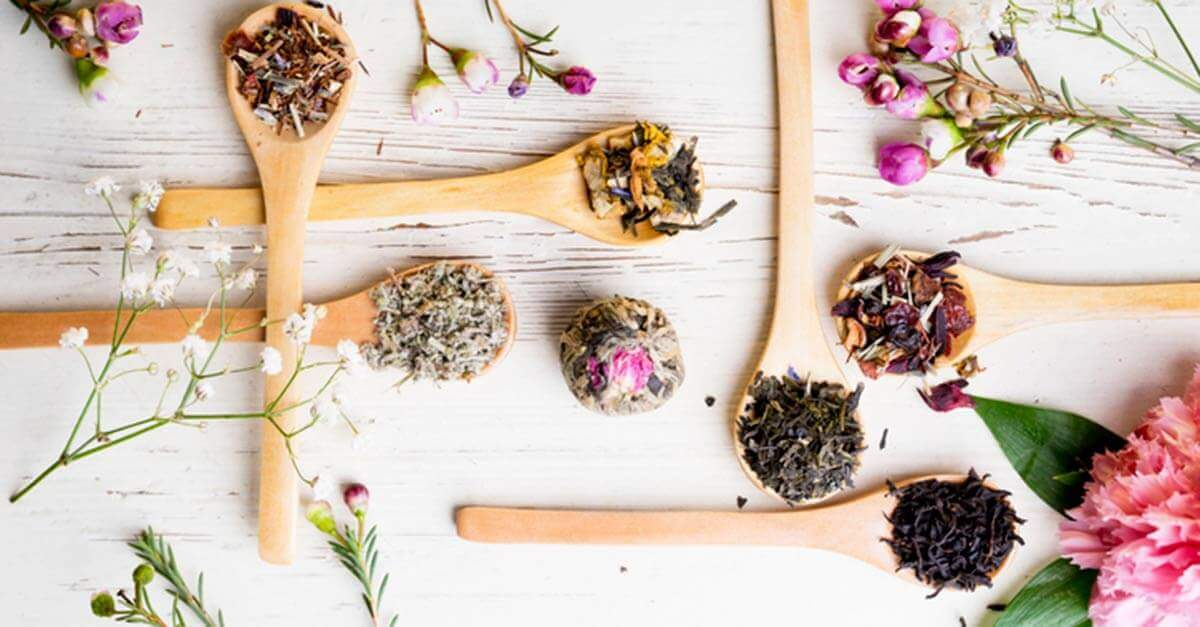 Dried herbs and flowers on wooden spoons