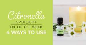 Top 4 Ways to Use Citronella: Our Essential Oil Spotlight of the Week