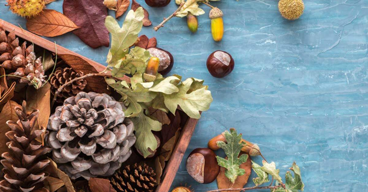 Pine cone tabletop decorations