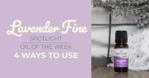 Top 4 Ways to Use Lavender Fine: Our Essential Oil Spotlight of the Week
