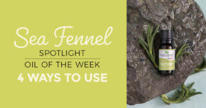 Top 4 Ways to Use Sea Fennel: Our Essential Oil Spotlight of the Week