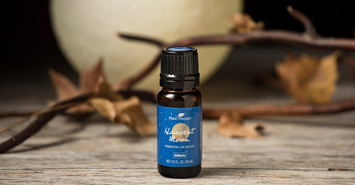 Finally fall essential oil fall blends What You Should be Diffusing This Fall