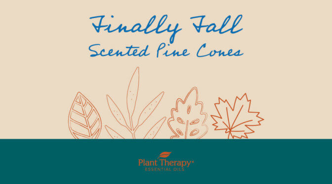 Finally Fall Scented Pine Cones
