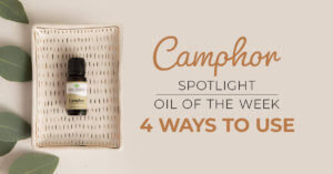 Top 4 Ways to Use Camphor: Our Essential Oil Spotlight of the Week