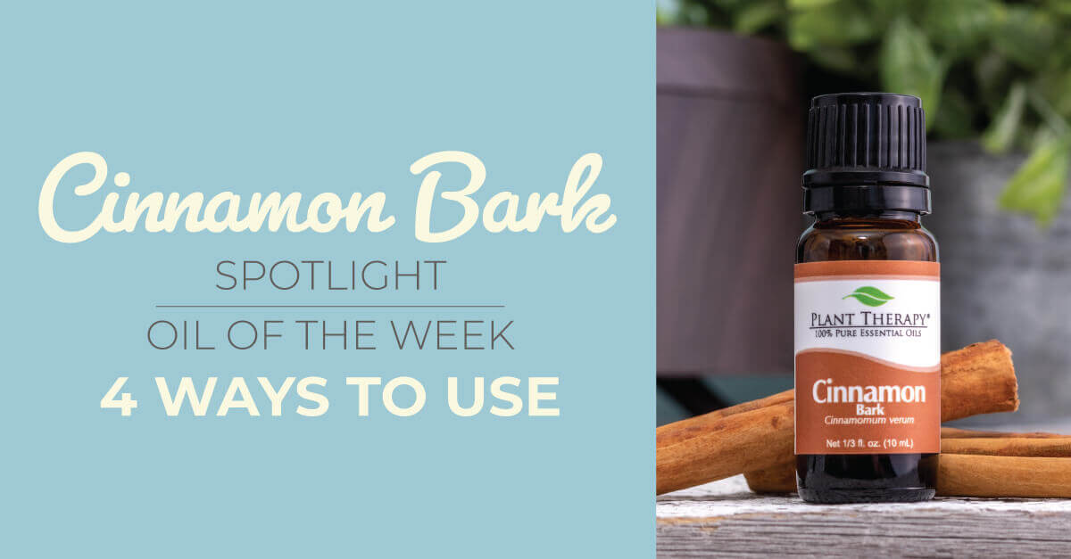 Top 4 Ways to Use Cinnamon Bark: Our Essential Oil Spotlight of the Week