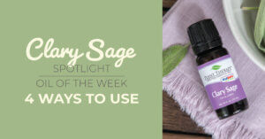 Top 4 Ways to Use Clary Sage: Our Essential Oil Spotlight of the Week