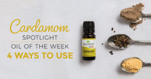 Top 4 Ways to Use Cardamom: Our Essential Oil Spotlight of the Week
