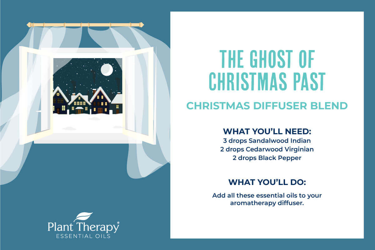 The Ghost of Christmas Past Diffuser Blend