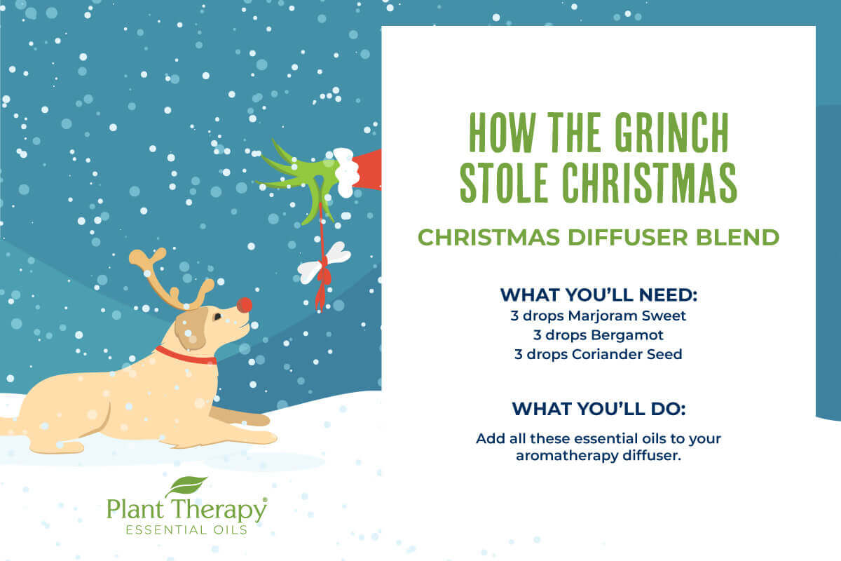 How The Grinch Stole Christmas Diffuser Blend