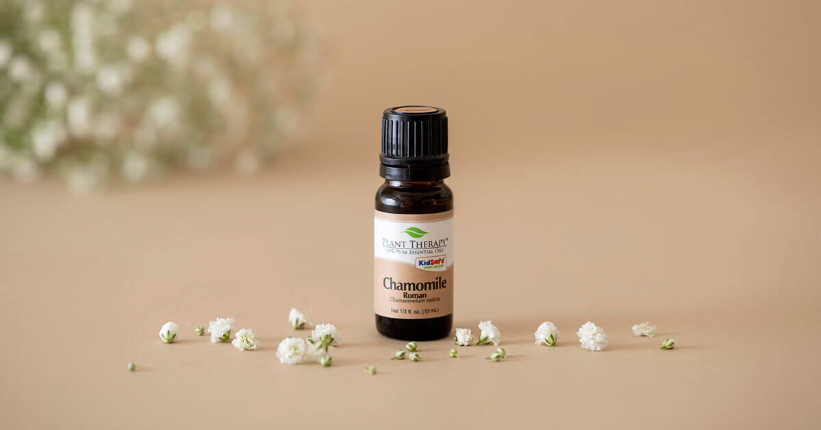 Plant Therapy Roman Chamomile Essential Oil