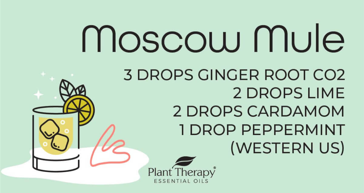 Moscow Mule Diffuser Blend