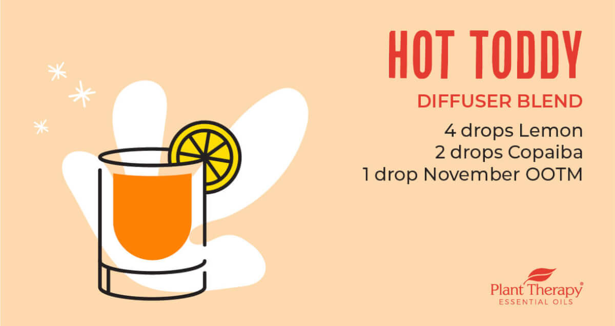 Hot Toddy Diffuser Blend
