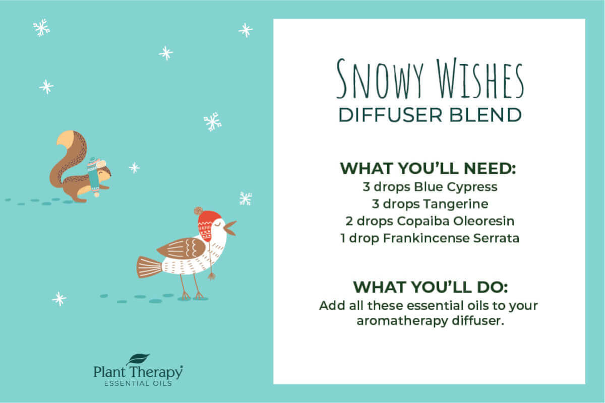 Snowy Wishes Diffuser Blend