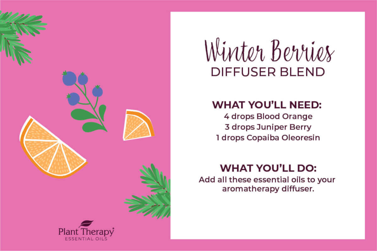 Winter Berries Diffuser Blend