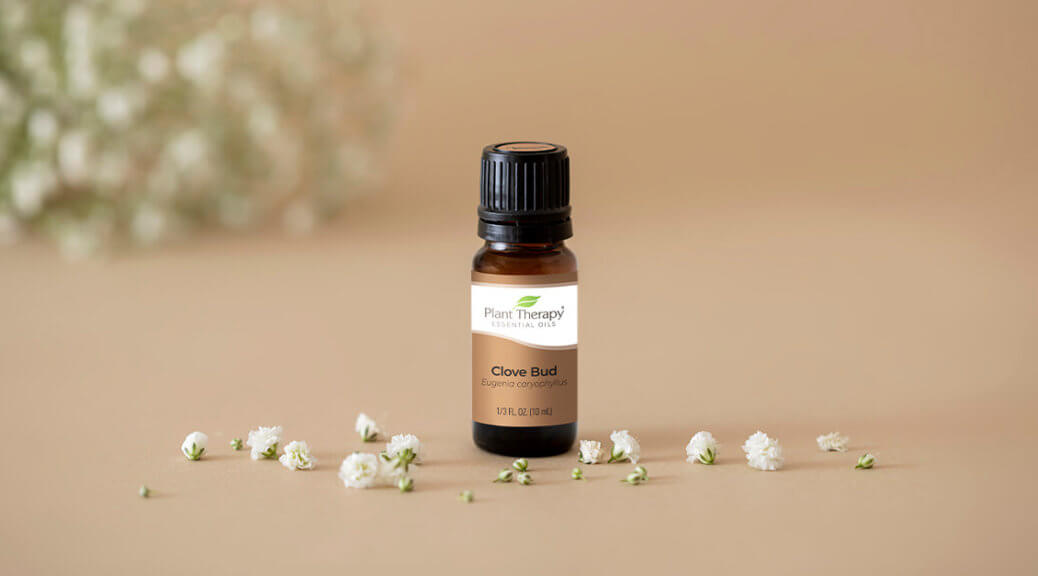 Clove Bud Essential Oil from Plant Therapy